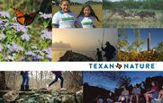 Texan by Nature Newsletter Opens in new window